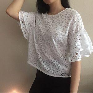Lace Ruffled Sleeve Blouse